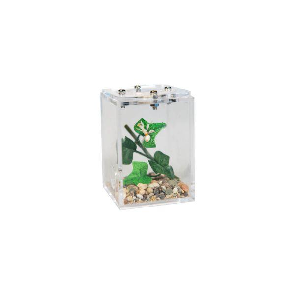 Mini insect stay, 5x5x7