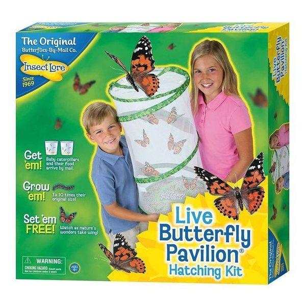 Pavilion butterfly garden, Vlinder kweekset
